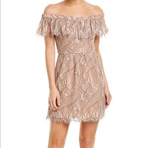Ways Terrace Lace Mini Dress